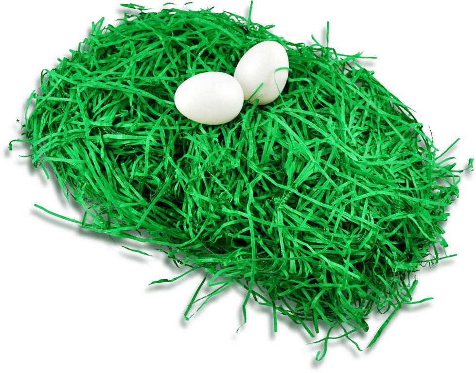 Ostern Deko Frühling Ostergrass Grass Grün